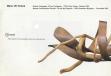 Catálogo exposición París - Bélgica (2001)