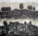 migracio del blanc al negra (100 x 100 cm)